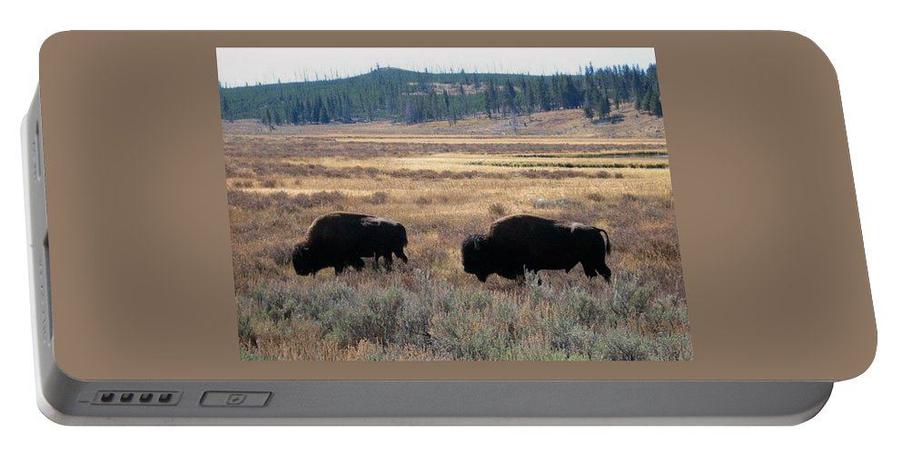 Buffalo Portable Battery Charger featuring the photograph Two Of A Kind by Kristina Deane