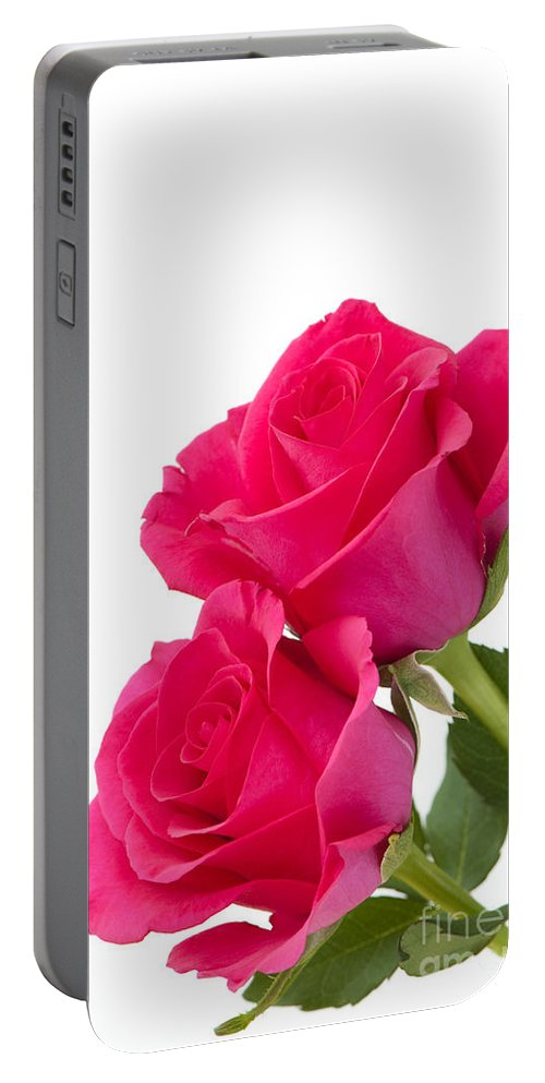 Annegilbert Portable Battery Charger featuring the photograph Two Roses by Anne Gilbert