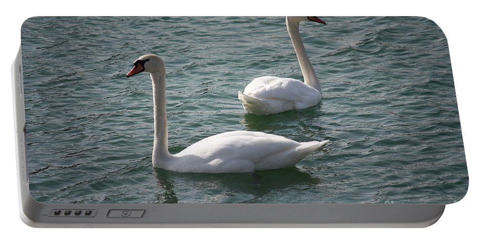 Nature Portable Battery Charger featuring the photograph Two Swans A Swimming by Brook Steed