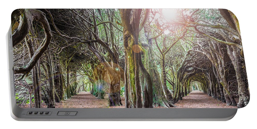 Campus Portable Battery Charger featuring the photograph Two Tunnels Taxus by Semmick Photo
