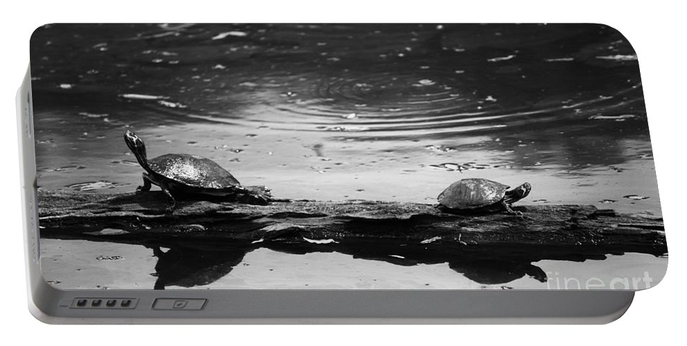 Photography Portable Battery Charger featuring the photograph Two Turtles On A Log by Jackie Farnsworth