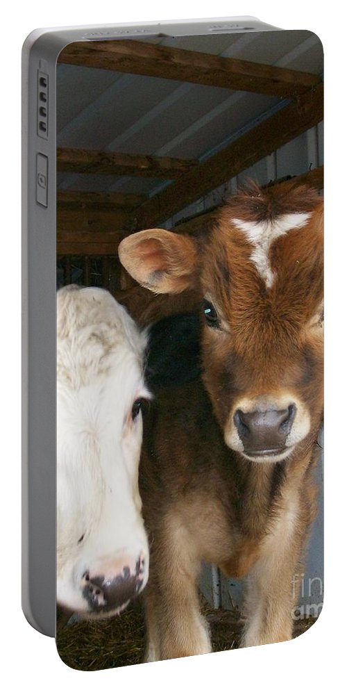 Cows Portable Battery Charger featuring the photograph Two's Company by Sara Raber