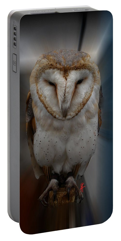Colette Portable Battery Charger featuring the photograph Typo Alba Owl Spain by Colette V Hera Guggenheim