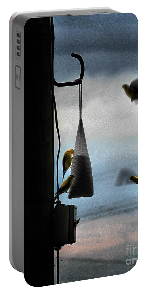 Birds Portable Battery Charger featuring the photograph U R Cleared For Landing On Runway 5 by Robert McCubbin