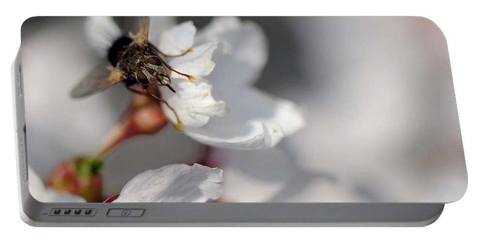Fly Portable Battery Charger featuring the photograph Ugly Pollinator by Ian Ashbaugh