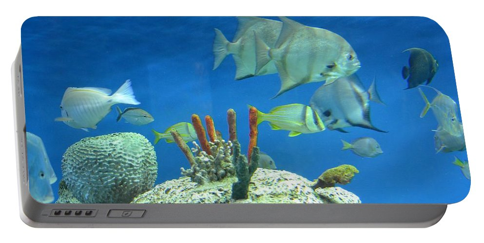 Underwater Beauty Portable Battery Charger featuring the photograph Underwater Beauty by Maria Urso