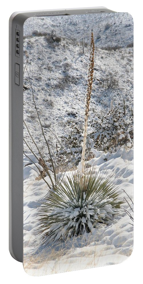 David S Reynolds Portable Battery Charger featuring the photograph Unexpected by David S Reynolds