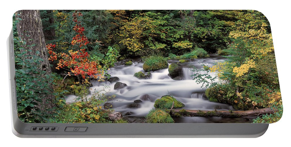 Autumn Portable Battery Charger featuring the photograph Upper Willamette River by Leland D Howard