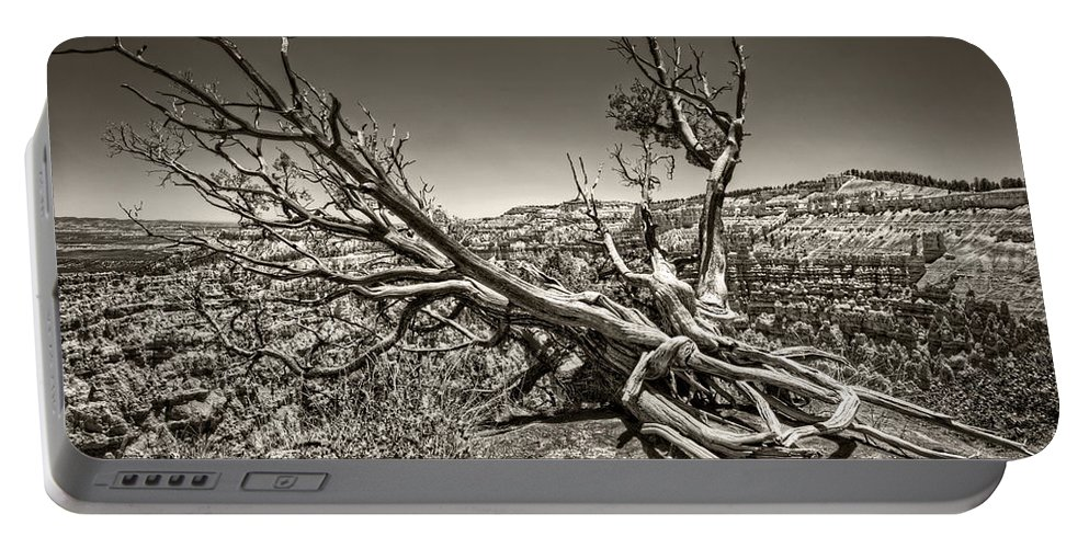 Bryce Canyon Portable Battery Charger featuring the photograph Uprooted - Bryce Canyon Sepia by Tammy Wetzel