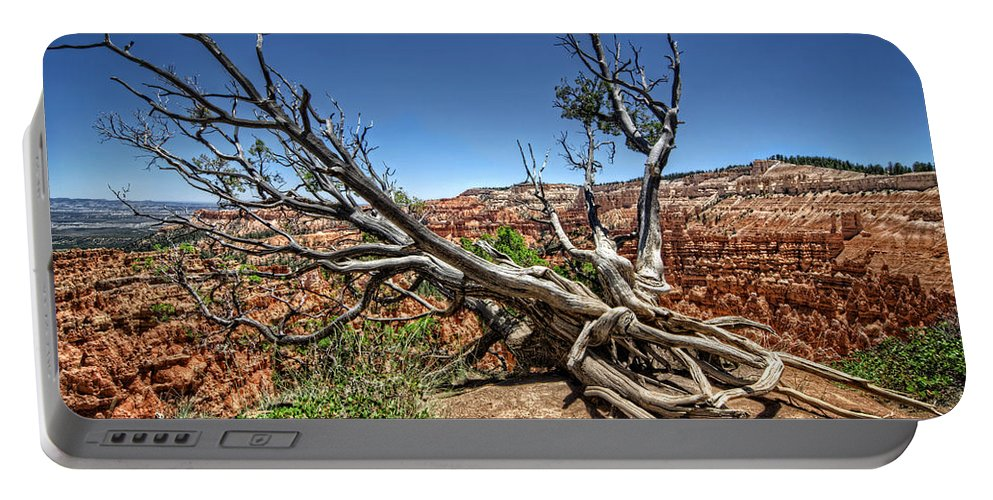 Tree Portable Battery Charger featuring the photograph Uprooted - Bryce Canyon by Tammy Wetzel