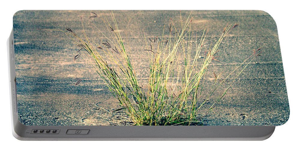Urban Portable Battery Charger featuring the photograph Urban Grass by Gary Richards