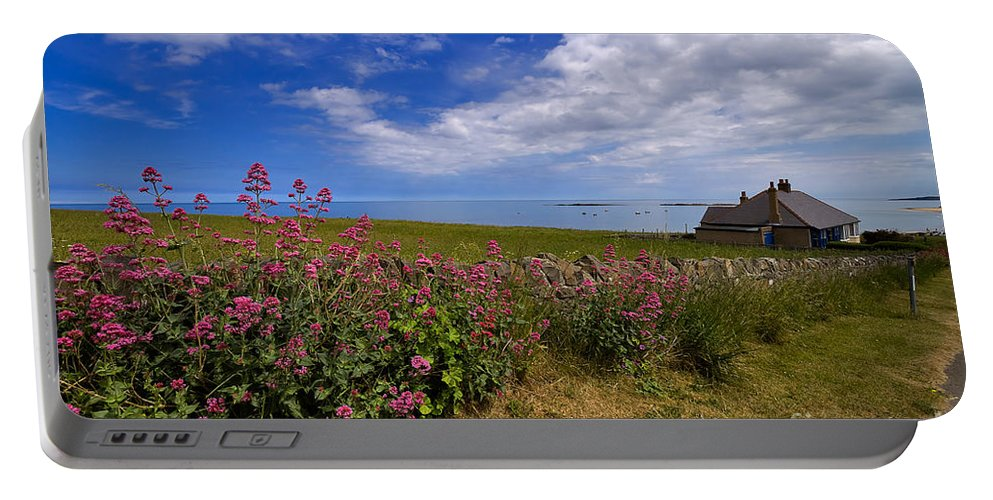 Travel Portable Battery Charger featuring the photograph Valerian By A Stone Wall On The Northumberland Coast by Louise Heusinkveld