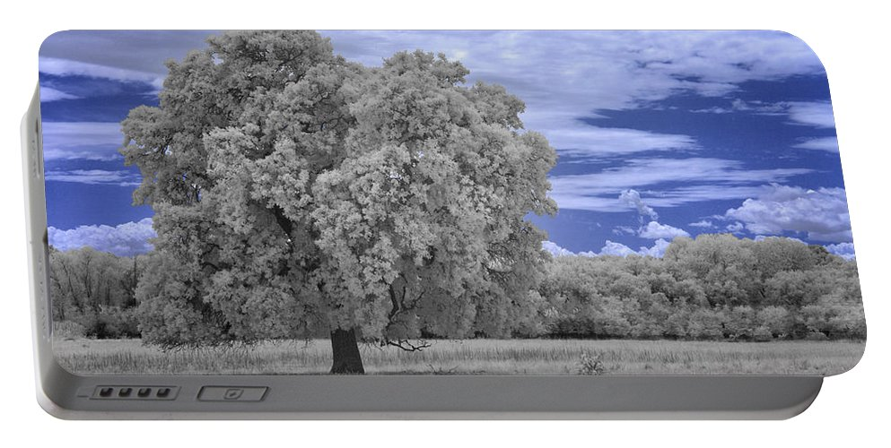 Oak Portable Battery Charger featuring the photograph Valley Oak #2 by Alan Kepler