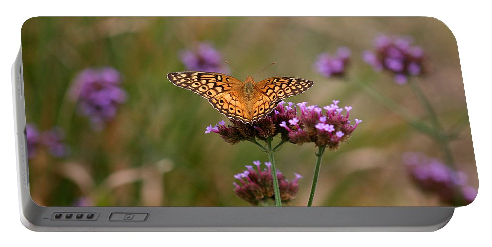 Variegated Portable Battery Charger featuring the photograph Variegated Fritillary Butterfly In Field by Karen Adams