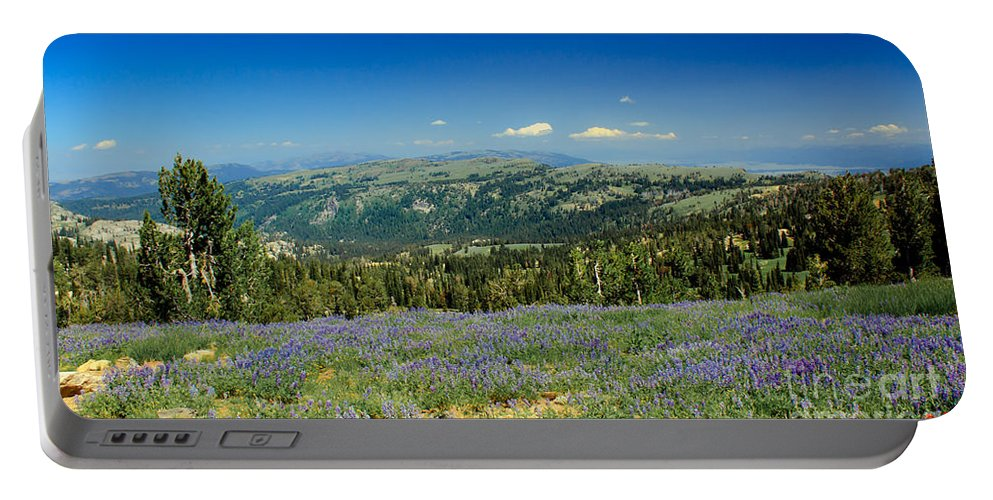 Southwest Idaho Portable Battery Charger featuring the photograph Vast View And Lupine by Robert Bales