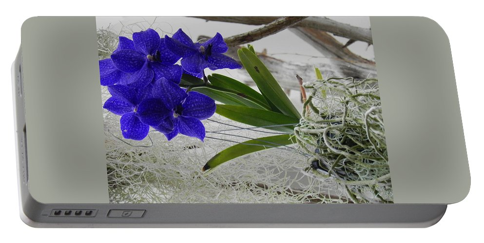 Vanda Orchid Portable Battery Charger featuring the photograph Vera The Vanda by Patricia Greer