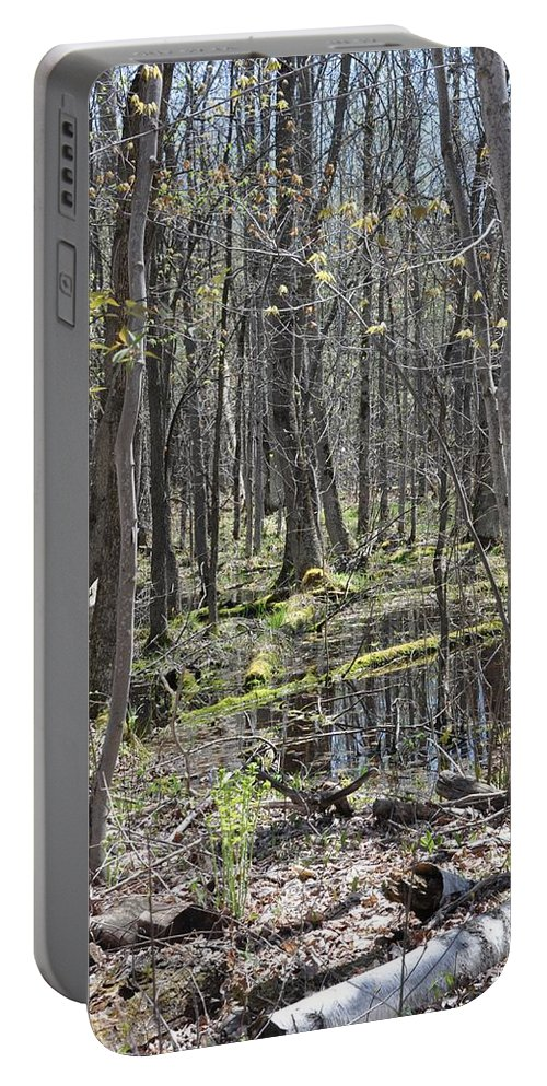 Vernal Pool Portable Battery Charger featuring the photograph Vernal Pool 1 by Valerie Kirkwood