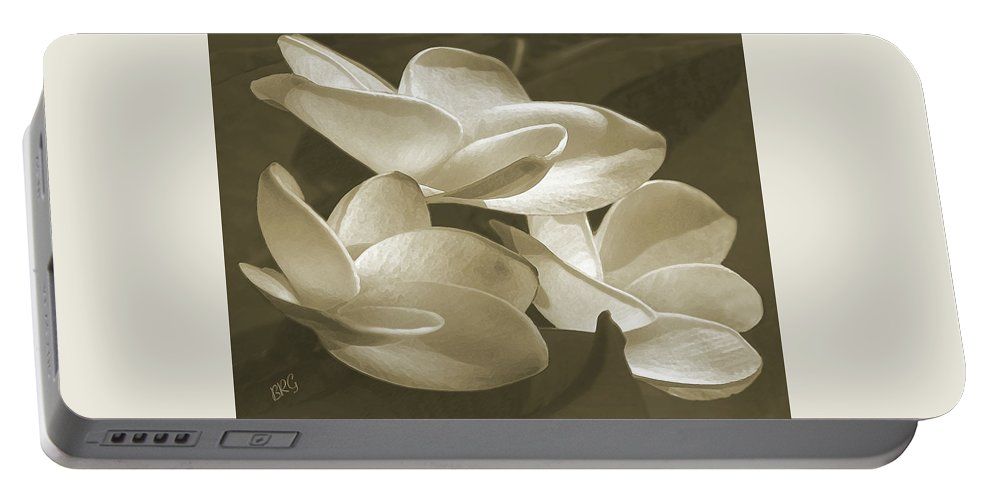 Plumeria Portable Battery Charger featuring the photograph Vintage Plumeria Trio by Ben and Raisa Gertsberg