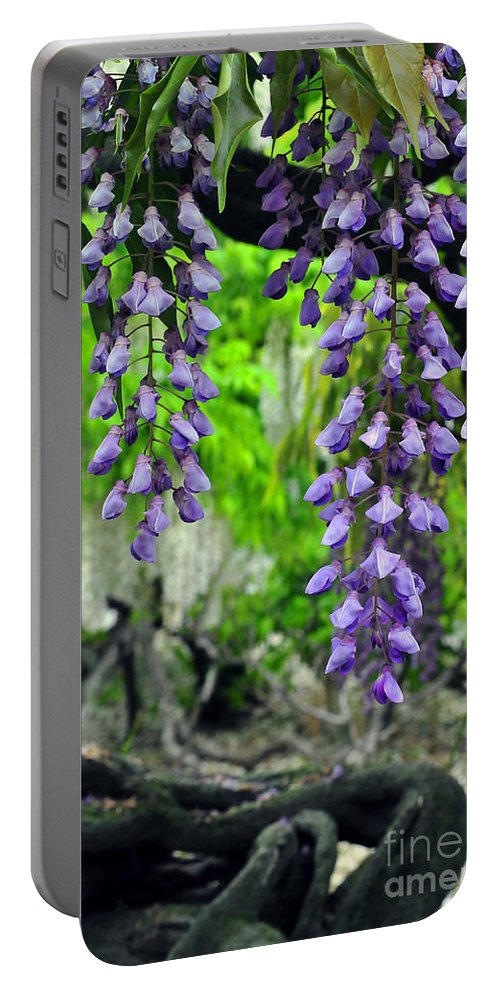 Floral Portable Battery Charger featuring the photograph Vintage Wisteria 200 by Terri Winkler