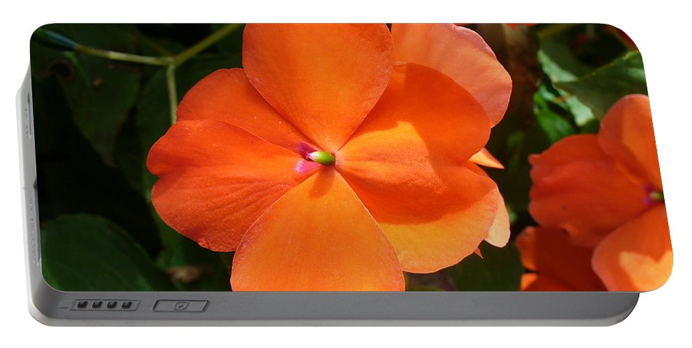 Busy Lizzie Portable Battery Charger featuring the photograph Vivid Orange Vermillion Impatiens Flower by Taiche Acrylic Art