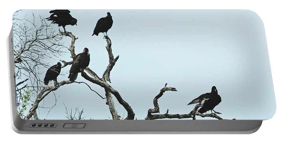 Vulture Portable Battery Charger featuring the photograph Vulture Club by Lizi Beard-Ward