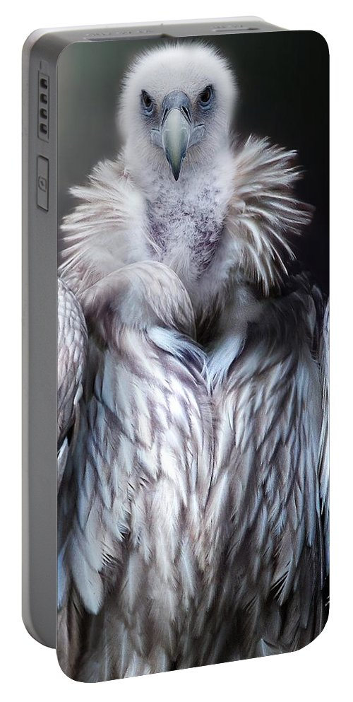 Vulture Portable Battery Charger featuring the photograph Vulture by FL collection