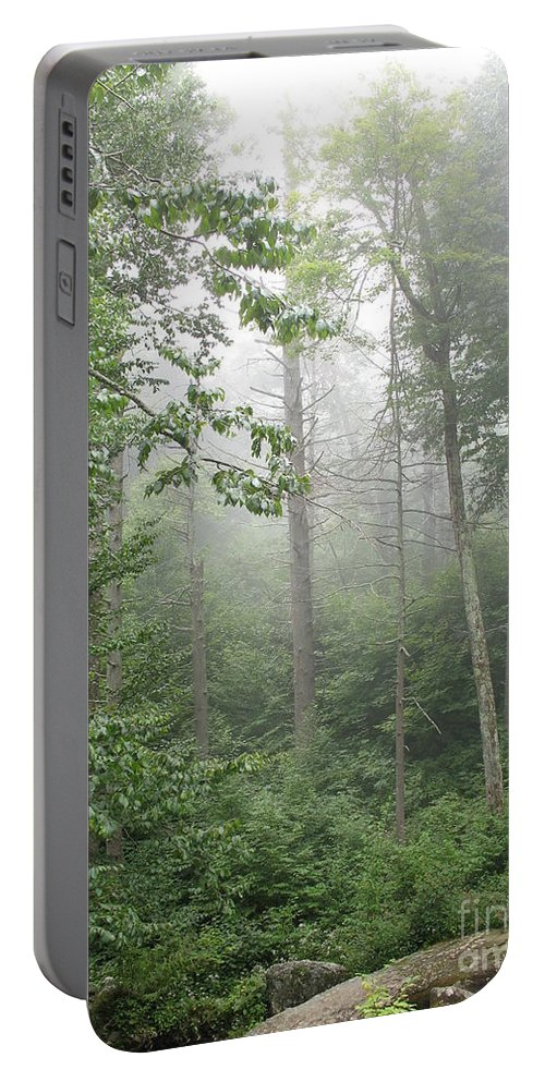 Mist Portable Battery Charger featuring the photograph Waft Of Mist - Shenandoah Park by Christiane Schulze Art And Photography