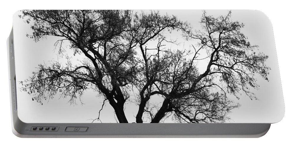 Tree Portable Battery Charger featuring the photograph Waiting By Our Tree by The Artist Project