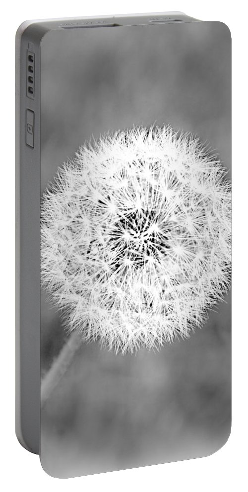 Dandelion Portable Battery Charger featuring the photograph Waiting For The Breeze by Tina Meador