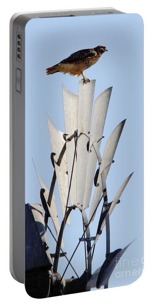Animal Portable Battery Charger featuring the photograph Waiting For The Wind by Robert Frederick
