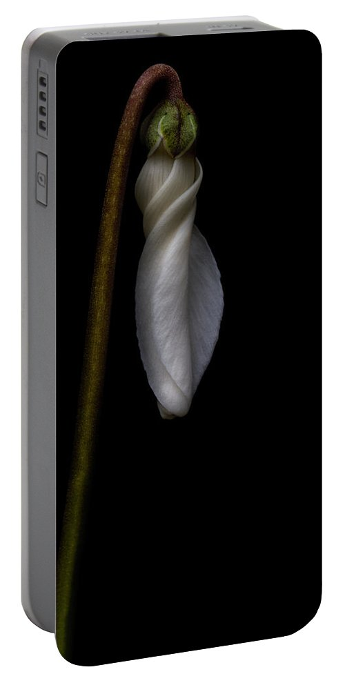 Flower Portable Battery Charger featuring the photograph Waiting To Bloom by Robert Woodward