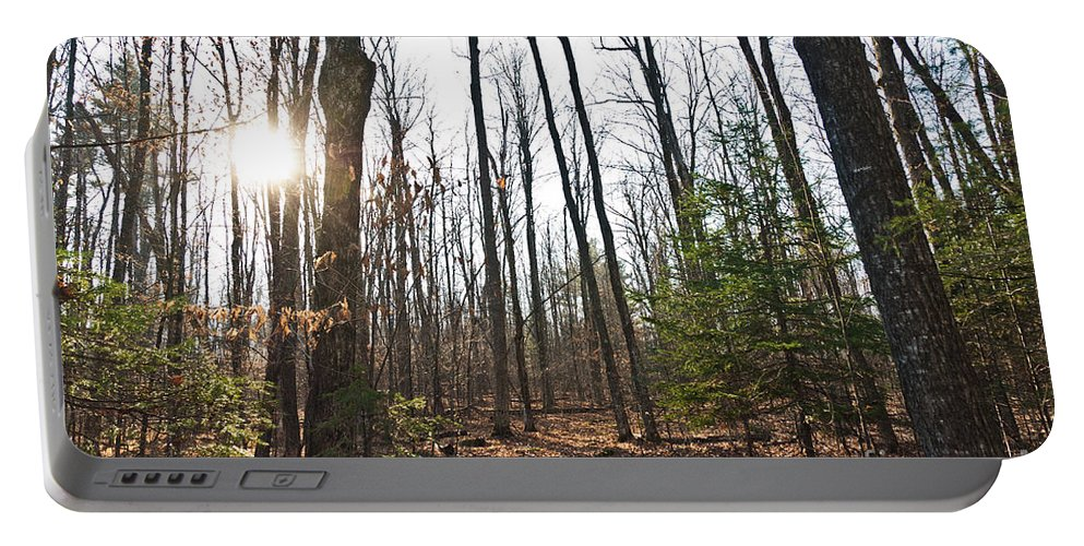 Landscapes Portable Battery Charger featuring the photograph Walk In The Woods2 by Cheryl Baxter