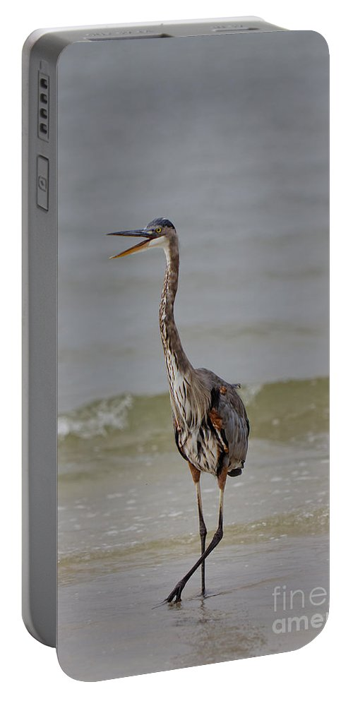 Great Blue Heron Portable Battery Charger featuring the photograph Walk The Talk by Rick Kuperberg Sr