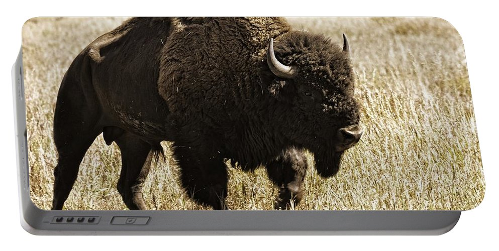 Wyoming Portable Battery Charger featuring the photograph Walking The Trail by Image Takers Photography LLC - Laura Morgan