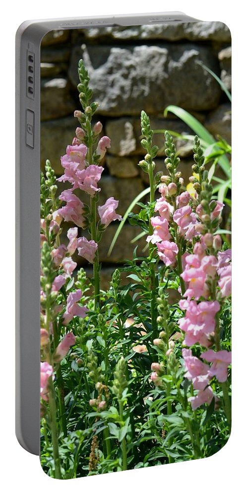 Wall Of Snapdragons Portable Battery Charger featuring the photograph Wall Of Snapdragons by Maria Urso