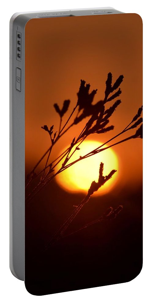 Warm Summer's Morn 2013 Portable Battery Charger featuring the photograph Warm Summer's Morn 2013 by Maria Urso