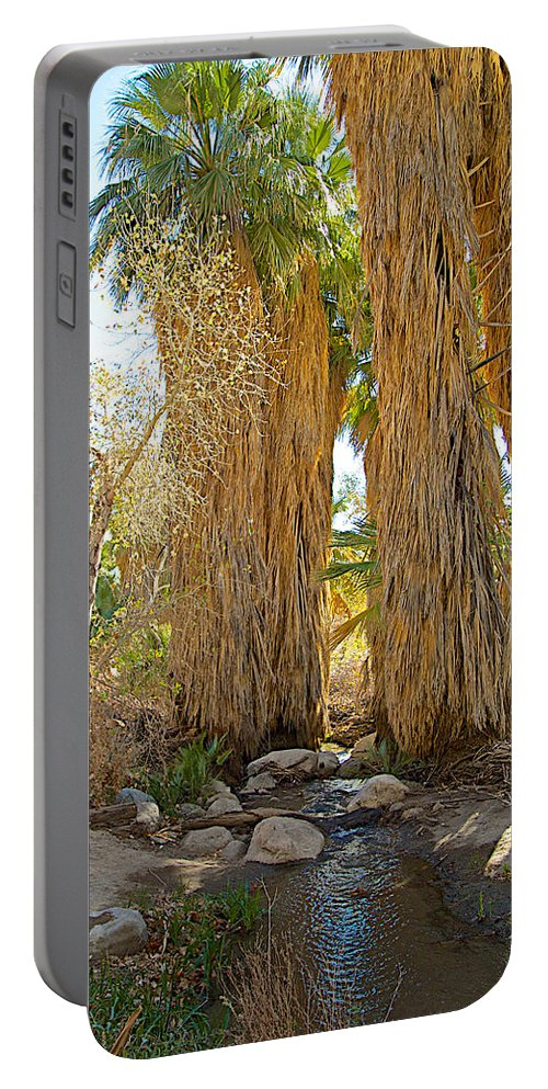 Washingtonian Fan Palms With Large Skirts In Andreas Canyon In Indian Canyons Portable Battery Charger featuring the photograph Washingtonian Fan Palms With Large Skirts In Andreas Canyon-ca by Ruth Hager