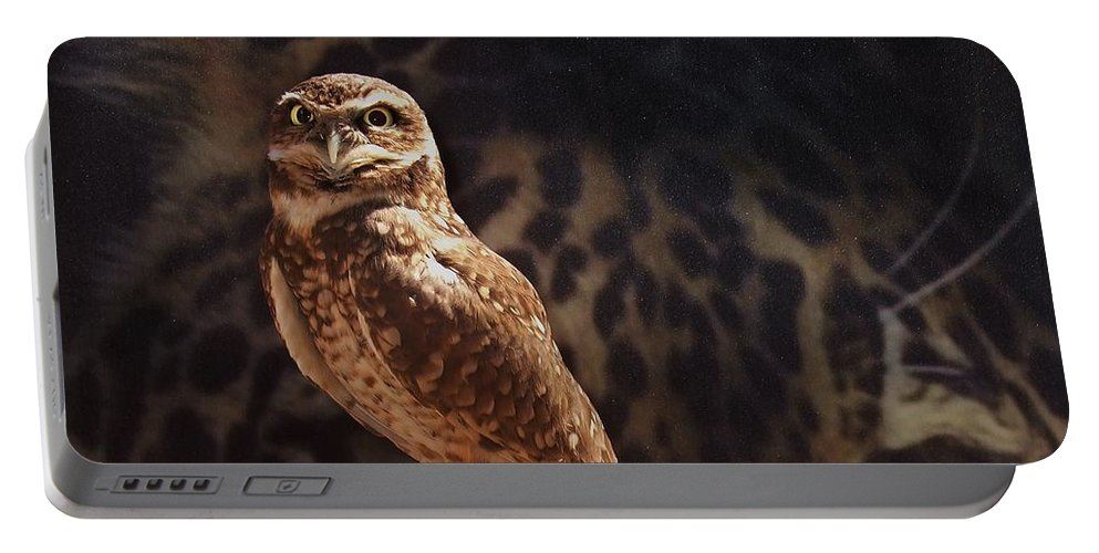 Cheetah Portable Battery Charger featuring the photograph Watch Your Back by Steve Ondrus