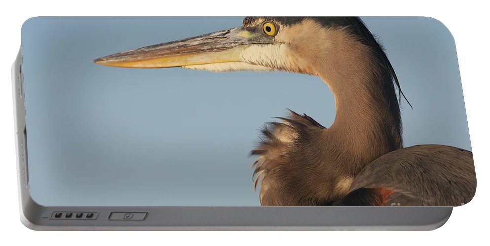 Heron Portable Battery Charger featuring the photograph Watchful Heron by Christiane Schulze Art And Photography
