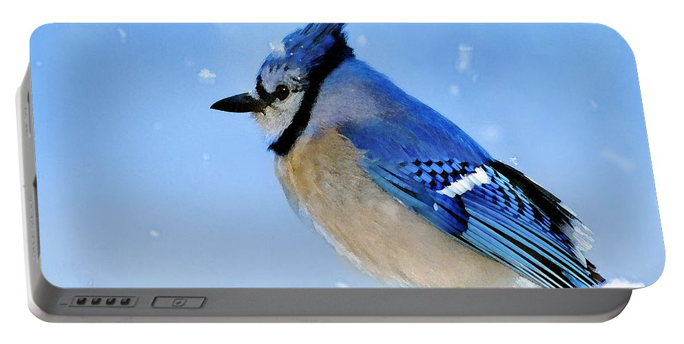 Bluejay Portable Battery Charger featuring the photograph Watching The Snow by Betty LaRue