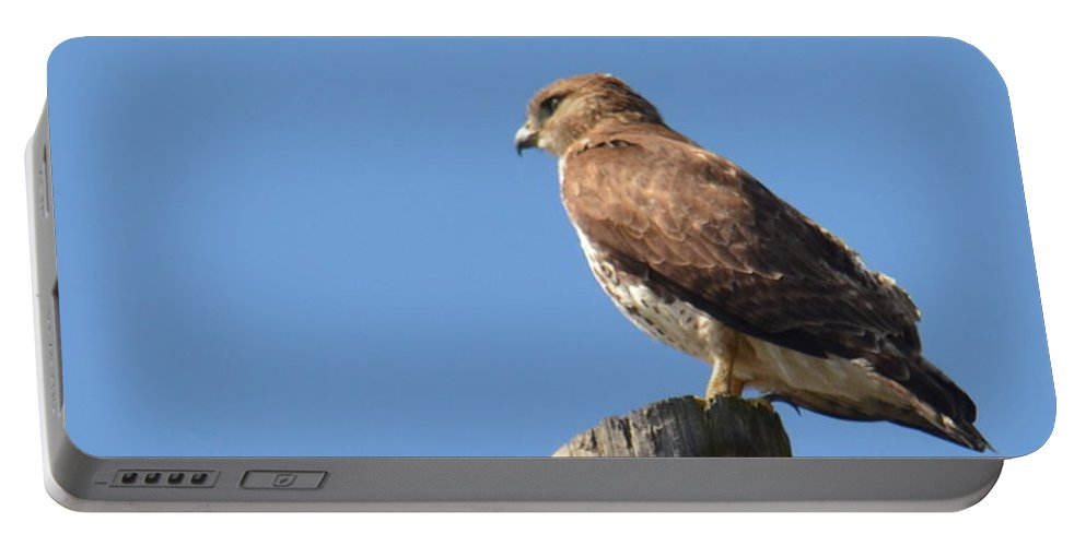 Watchtower-hawk Portable Battery Charger featuring the photograph Watchtower-hawk by Maria Urso