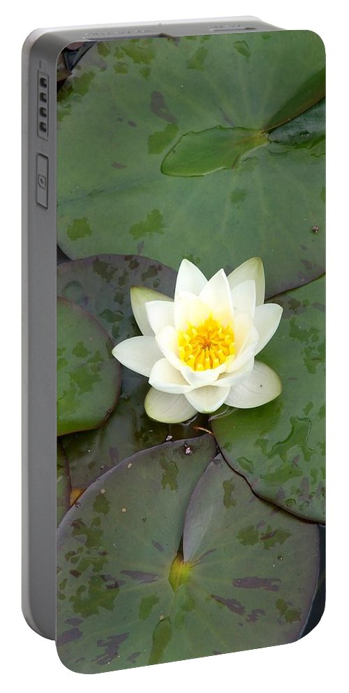 Waterlily Portable Battery Charger featuring the photograph Water Lily - White by Ian Mcadie