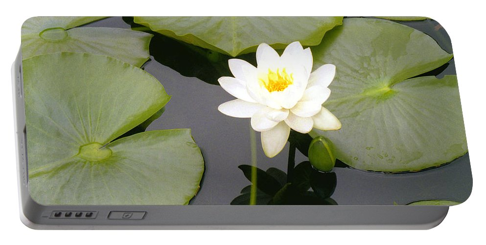 Flora Portable Battery Charger featuring the photograph Water Lily I I by Jim Smith