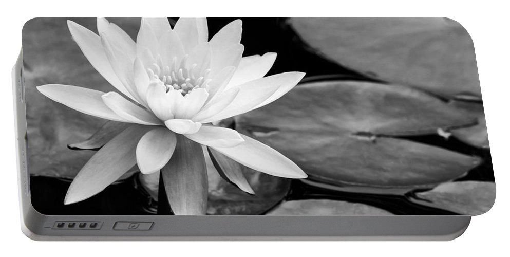 Landscape Portable Battery Charger featuring the photograph Water Lily In The Lily Pond by Sabrina L Ryan