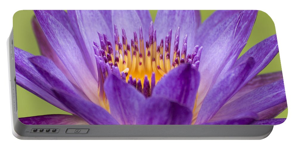 Summer Portable Battery Charger featuring the photograph Water Lily Lindsey Woods Macro by Terri Winkler