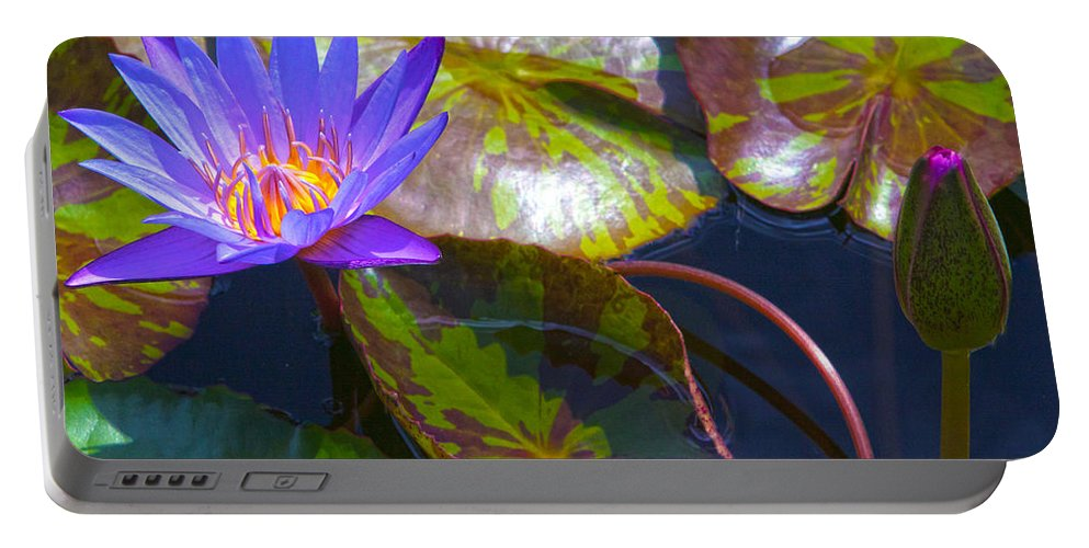 Flowers Portable Battery Charger featuring the photograph Water Lily Pond by Roselynne Broussard