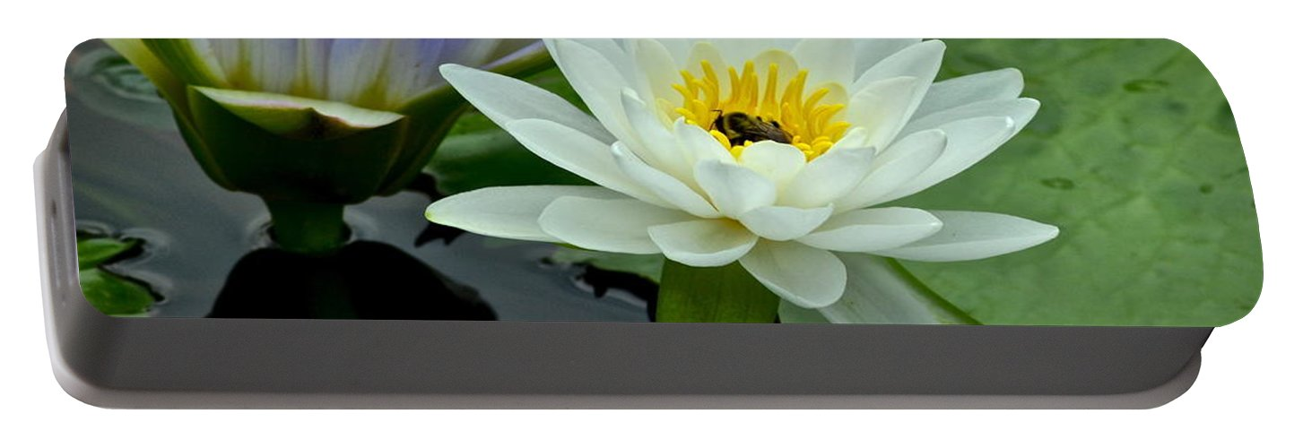 Water Portable Battery Charger featuring the photograph Water Lily Serenity by Frozen in Time Fine Art Photography