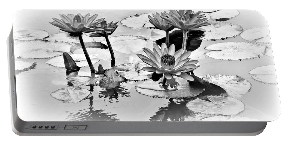 Water Lily Portable Battery Charger featuring the photograph Water Lily Study - Bw by Nikolyn McDonald