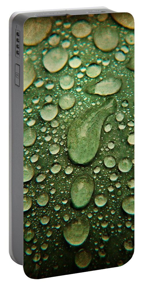Watermelon Portable Battery Charger featuring the photograph Raindrops On Watermelon Rind by Chris Berry