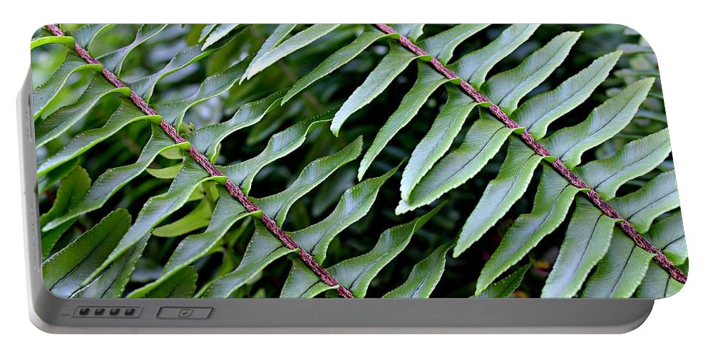 Fern Portable Battery Charger featuring the photograph Waves Of Green by Clare Bevan